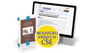 Guide Pratique des Représentants du Personnel (CSE, CE, CHSCT, DP, DS)