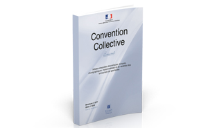 Votre convention collective imprim e la demande for Convention restauration collective