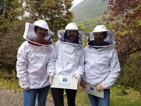 Nos expertes en miel